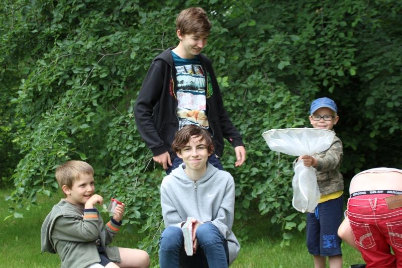 Paul und Loris sowie Hans und Oscar (Dreikäsehoch) entdecken die krabbelige Vielfalt einer Wiese.